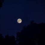Quando cambia la Luna