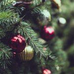 Quando si fa l'albero di Natale?