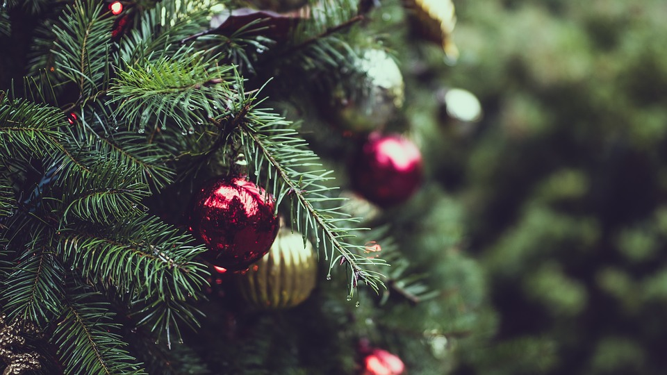 Addobbi Natalizi Quando Toglierli.Quando Si Fa L Albero Di Natale Il Sito Dei Quando
